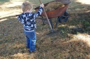 I'll try this rake ...