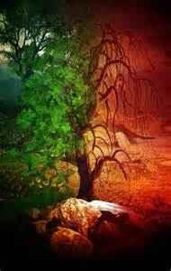 good.evil tree