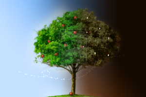 tree_of_good_and_evil_by_missjdiva-d2yp0py