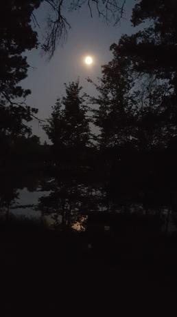 sunset Trego