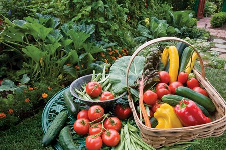 guyer-gardening-pic-2