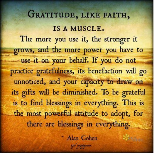 gratitudelikefaithisamuscle-1460083997p8cl4