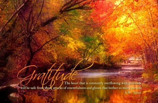 gratitude fall