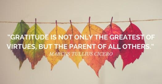Gratitude parent